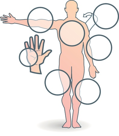 human body Illustration