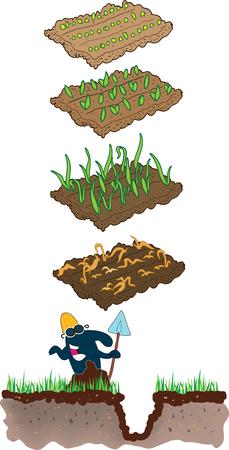 dug: Mole and grass Illustration
