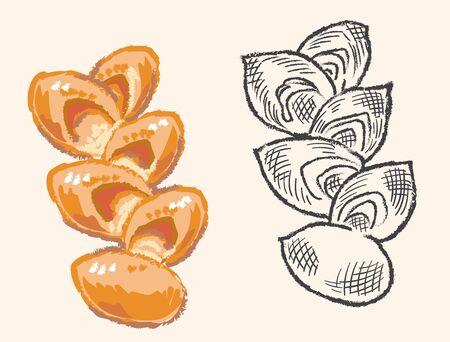 Twisted bread, French bread bacon Epi. Vector illustration. 일러스트
