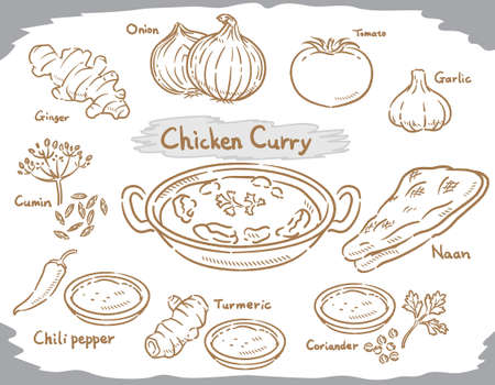 Vegetables, Indian spices for chicken curry isolated on white. Vector illustration.