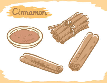 Cinnamon isolated on white. Vector illustration.