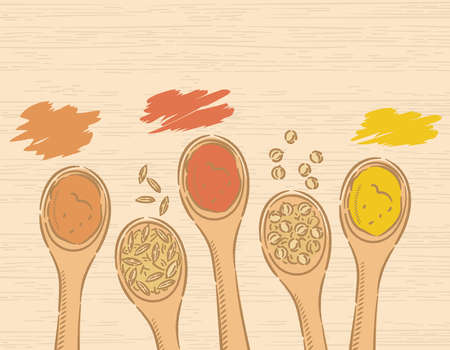 Spices on spoons for curry. Garam masala, turmeric, coriander, cumin, chili. Vector illustration.