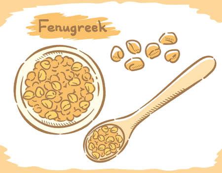 fenugreek seeds isolated on white. Vector illustration.