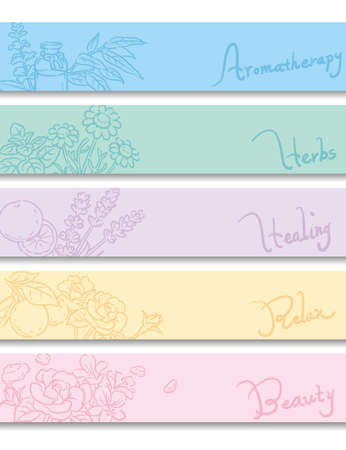 Set of banners. Popular essential oil flowers and herbs. Vector illustration. Illustration