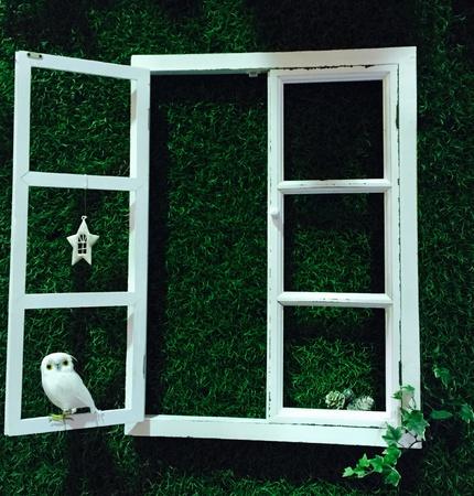 pane: Window pane with bird Stock Photo