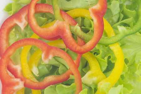 closed up of green oak lettuce with multi color bell peppers