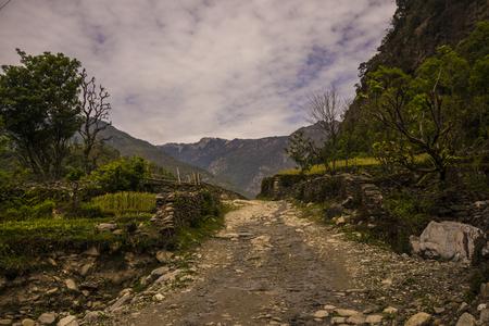 Scenic trekking routeNepal Stock Photo