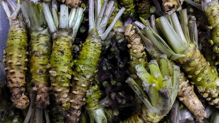 Fresh wasabi sold in the Japanese market Stock Photo