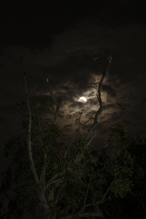 Bloody moon phenomena at night , Thailand