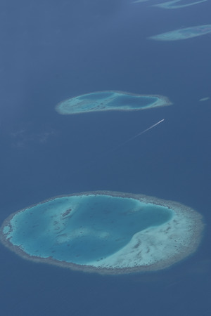 Bird eye view of blue sea and island in Maldives