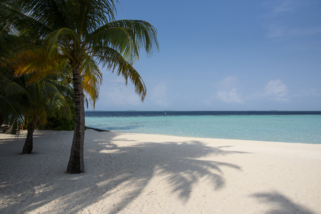 Tropical beach at lagoon in Maldives Stock Photo