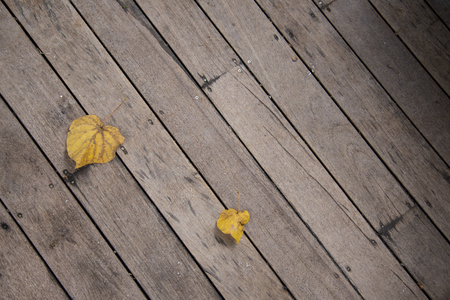 Vintage yellow leaf on wooden texture