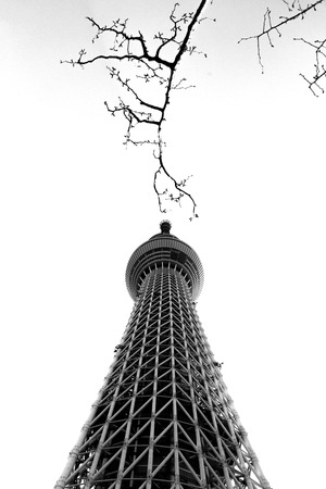 Tokyo sky tree in black and white mood Editorial