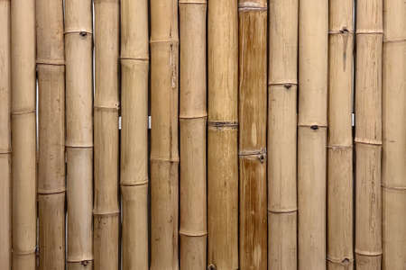Dried bamboo texture pattern background, Zen art design for  graphic template for cafe advertisment 스톡 콘텐츠