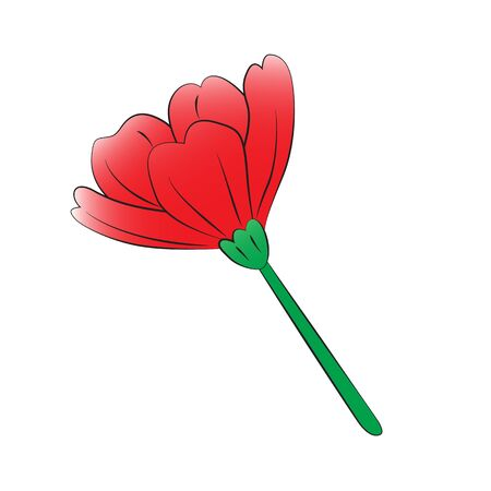 poppies: Vector cartoon poppies on white background.