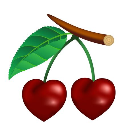 Cherry in the form of heart. illustration