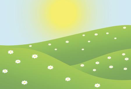 Bright sun shining on a field camomile Stock Illustratie