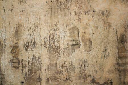 Plywood surface texture background. Vintage wood board Foto de archivo
