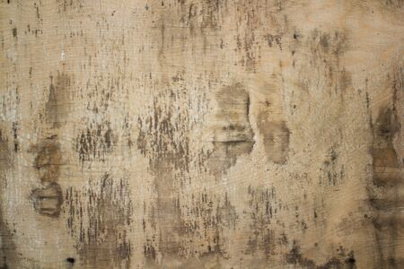 Plywood surface texture background. Vintage wood board Stockfoto
