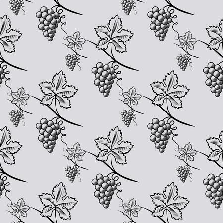 Seamless Pattern of Grape. 矢量图像