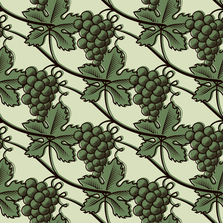 Seamless Pattern of Green Grapes. 向量圖像