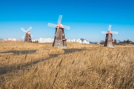 incheon: Old wooden windmills the field in the park,south korea Stock Photo