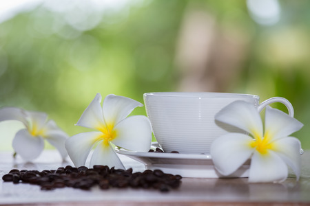 White coffee cup placed by the window on a green backdrop.