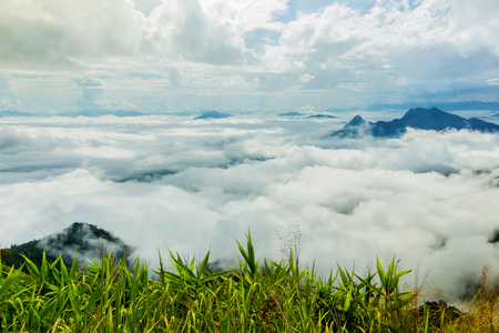 Morning mist in the valley at Phu Chi Fa.