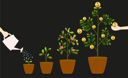 regando plantas: La inversión es como la plantación de árboles. Tenga cuidado que proporcionará un buen crecimiento.