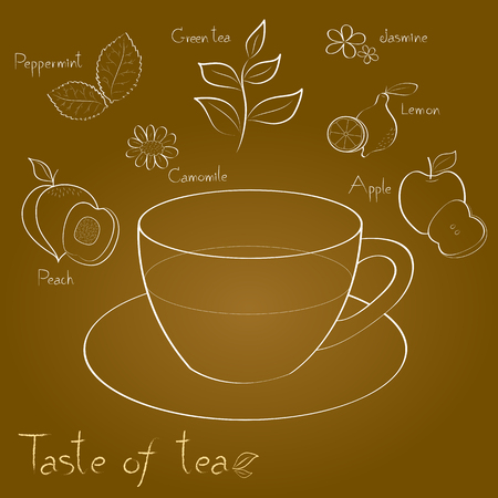 camomile tea: kind of tea is a white line on brown background Illustration