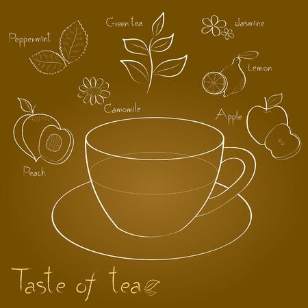 camomile tea: kind of tea is a white line on brown background Illustration