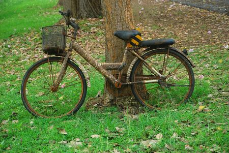 discard: A rusty old bicycle is discard on the green grass in the public park