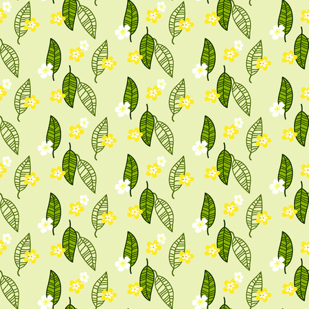 light green background: abstract of white and yellow plumeria with green leaf and line style in seamless pattern on light green background