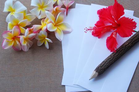 vertical lines: Varios flor plumeria e hibisco rojo ponen en tela marr�n con unas peque�as l�neas verticales incluyendo con el sobre blanco y un l�piz