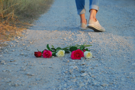 selective focus at rose and blurry leg of woman and background in concept about leave and walk away from love Stock Photo