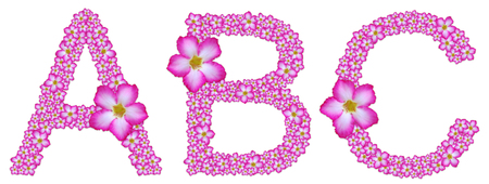 ABC, font decorated from pink azalea flower on white background