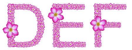 DEF, font decorated from pink azalea flower on white background Stock Photo