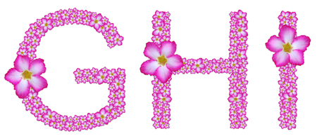 GHI, font decorated from pink azalea flower on white background