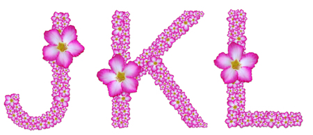 JKL, font decorated from pink azalea flower on white background
