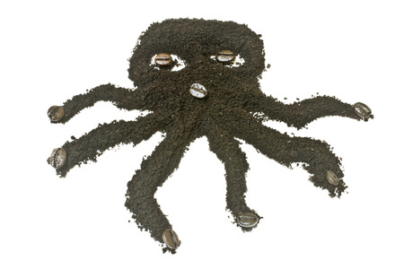 coffee grounds: Coffee grounds, octopus  shape.