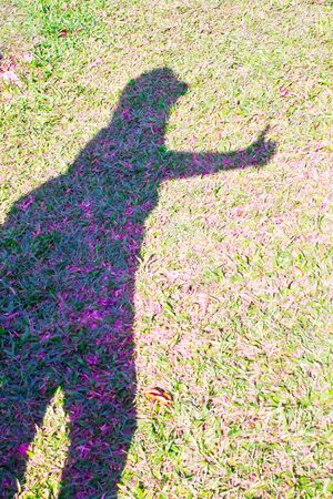 woman shadow: Woman shadow on grasses Stock Photo