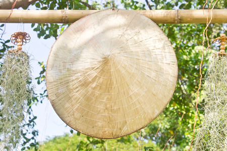 conical: Vietnamese conical straw hat