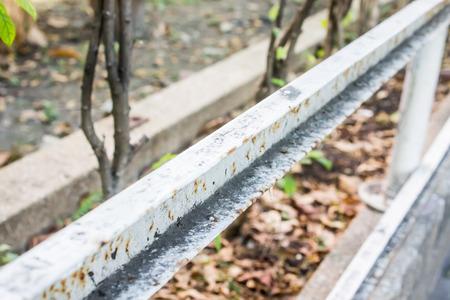 fence: white iron fence