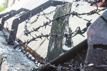 barbed wire fence: barb fence