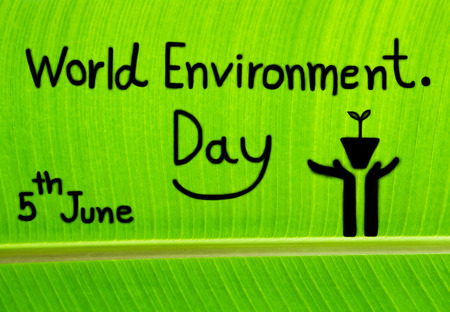 the natural world: Banana leaf textured, write World Environment Day