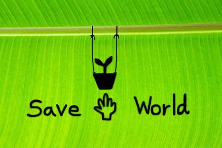 save the world: Banana leaf write Save world and draw sprout