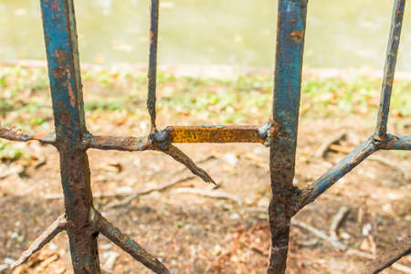 rusty fence: Rusty Fence, metal fence, iron fence