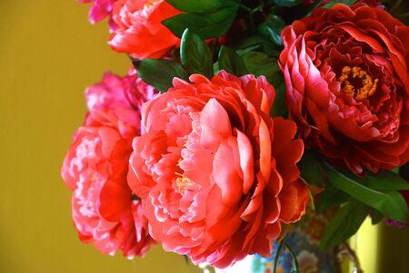 botan: pink botan flowers on glass jar decorated Stock Photo
