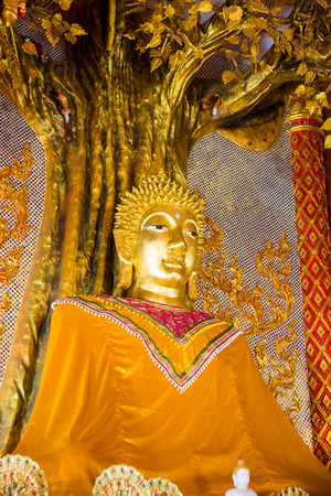 Buddha image in temple hall,Chiangrai temple,Thailand