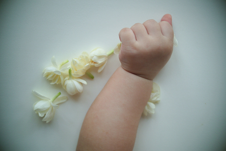 jugueria: little hand of little baby play with white flowers jasmine